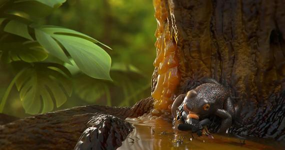 ranas de 99 millones de años