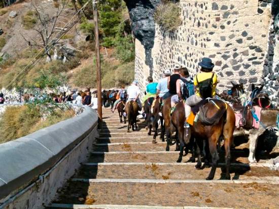 montar burros en Grecia