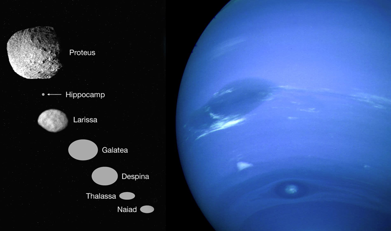Neptuno Hipocampo