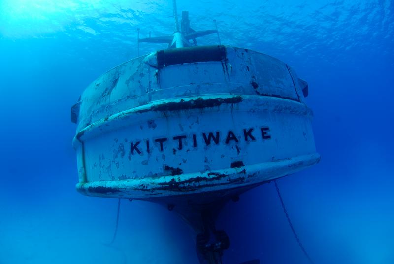 naufragio Kittiwake
