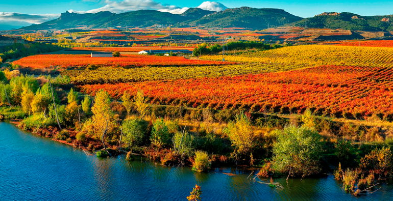 España Vino La Rioja