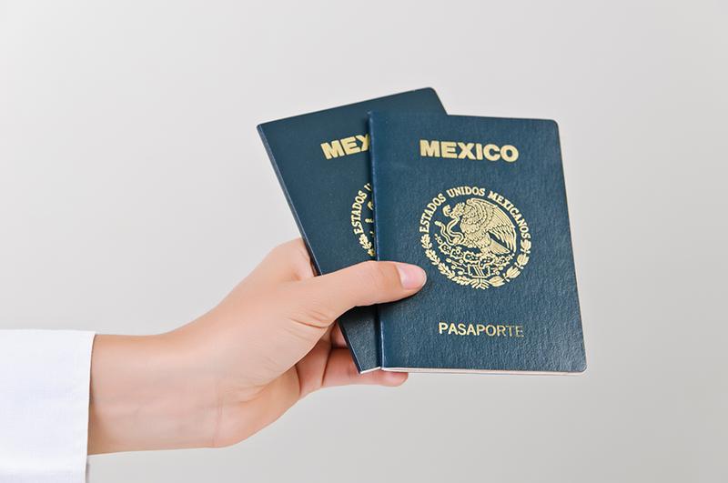 Pasaportes diseños