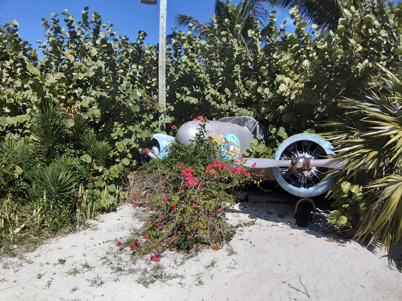 Castaway Cay Donald Isla privada de Disney