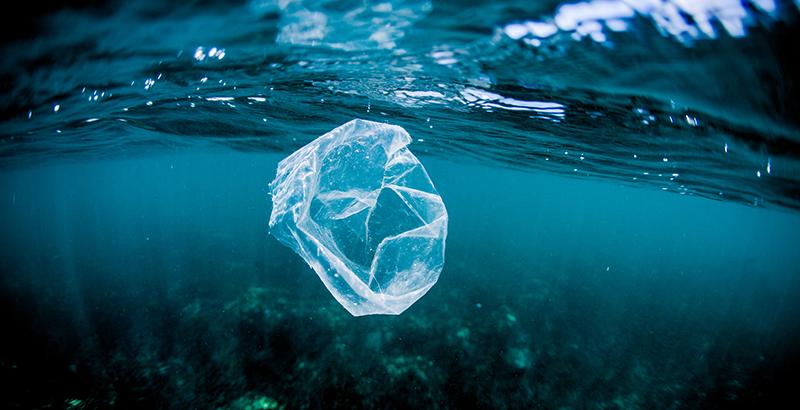 plastico punto mas profundo del oceano