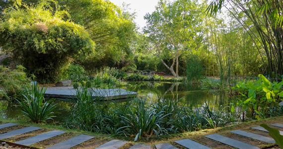 Jardín Botánico de Culiacán