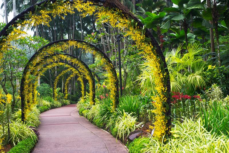 Jardín botánico Singapur