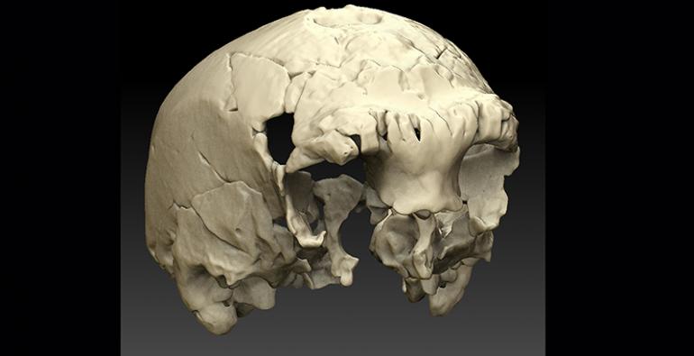 craneo 40,000 años