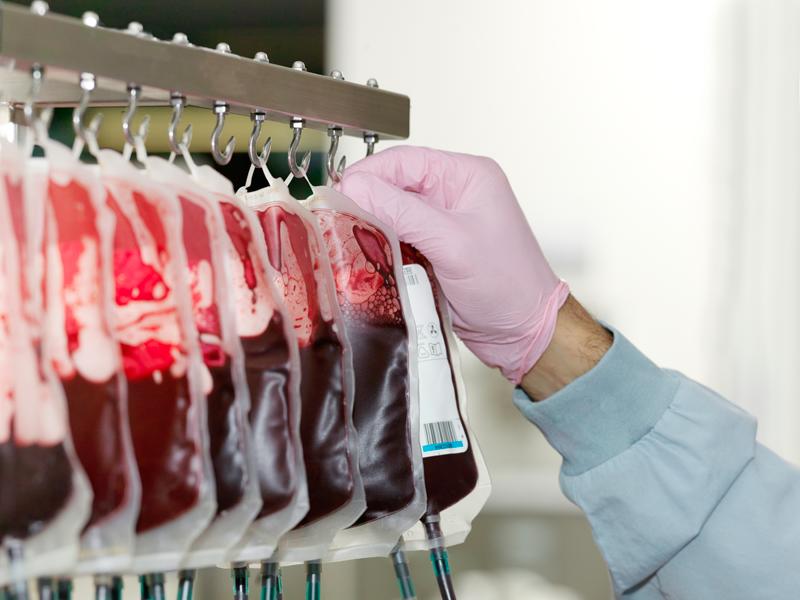 donantes de sangre voluntarios