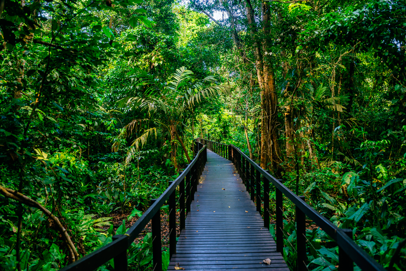 Costa Rica Parque Nacional Cahuita