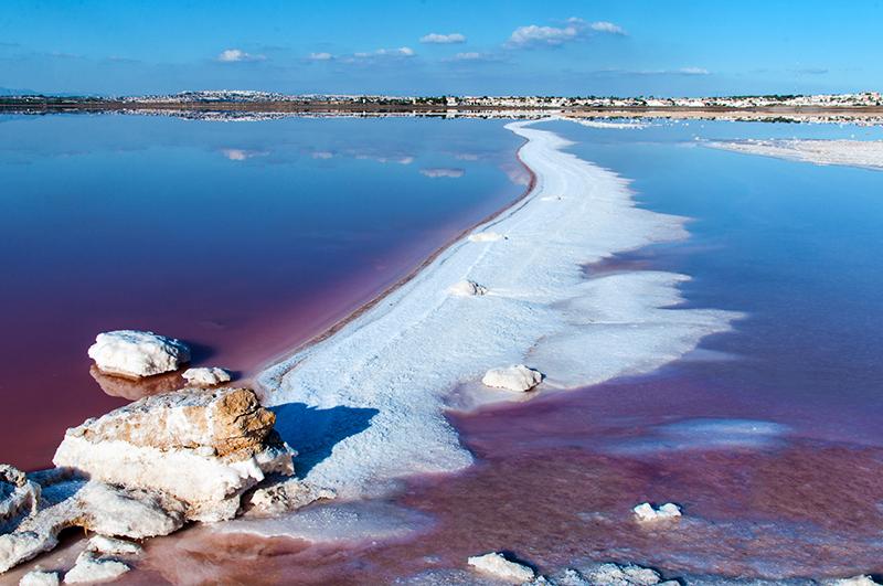 Torrevieja laguna rosada sal