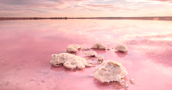 enigmática Laguna rosada