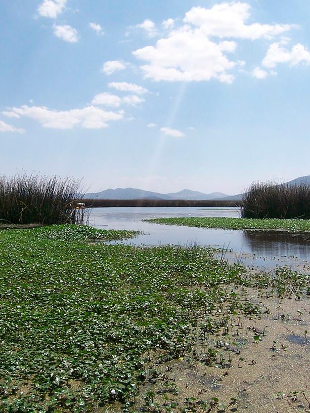 laguna de Tecocomulco