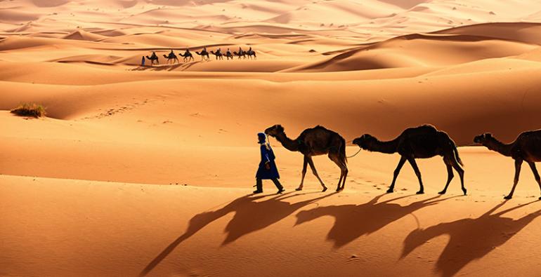 Un Viaje De Siete Días Por El Sahara National Geographic En Español
