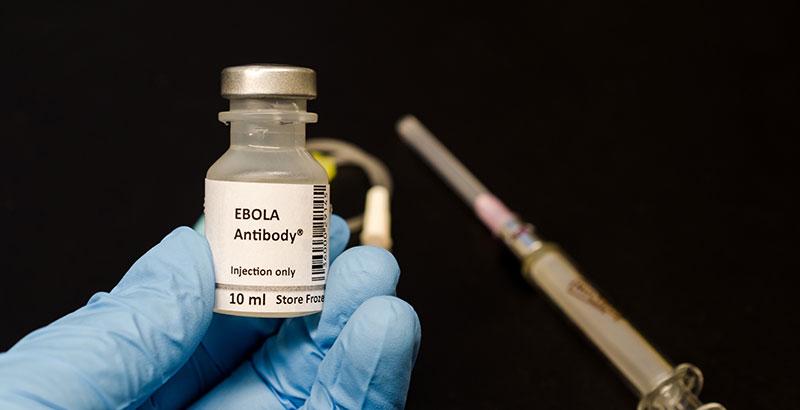 virus del Ébola cura