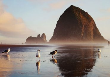 Haystack Rock Oregón Estados Unidos