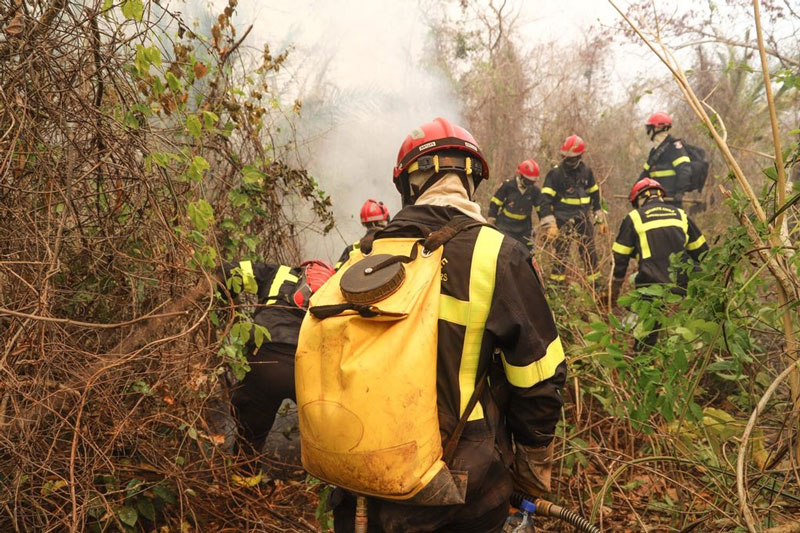 Bolivia fuego incendios forestales