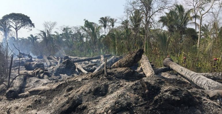 Bolivia Incendios forestales
