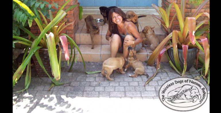 perros callejeros huracán Dorian