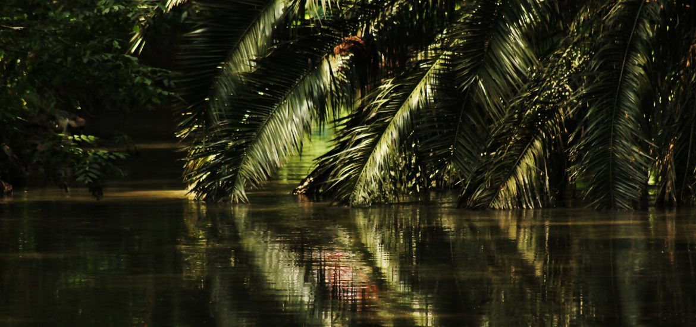 río Magdalena Concurso