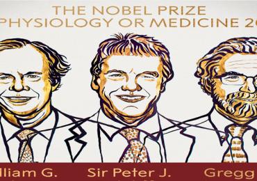 Novel de Medicina 2019