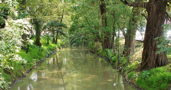 Concurso Río Magdalena