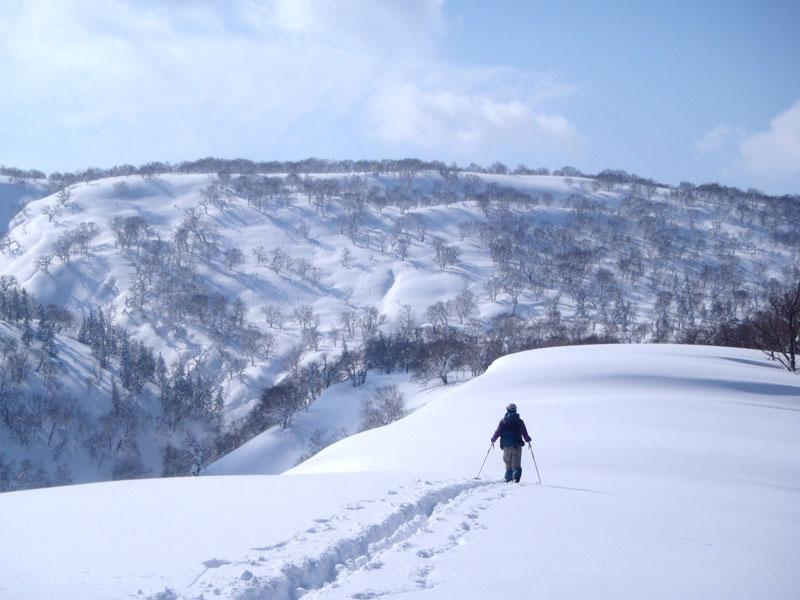 Japón en invierno