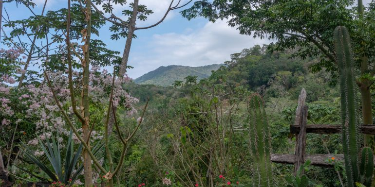 Jardín Botánico de Vallarta
