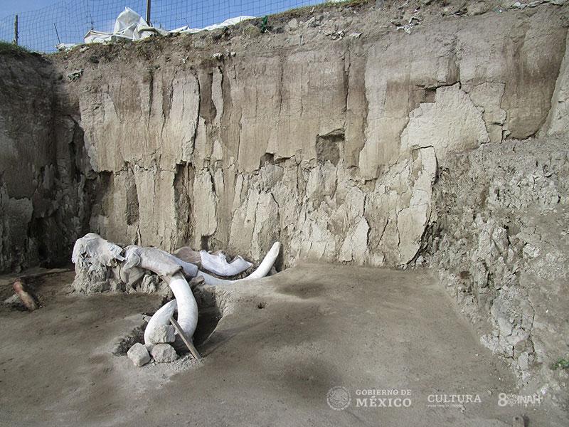 mamuts Tultepec