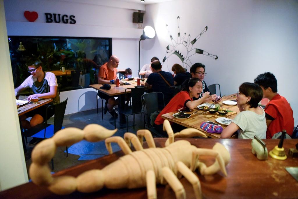 Camboya Bugs Cafe