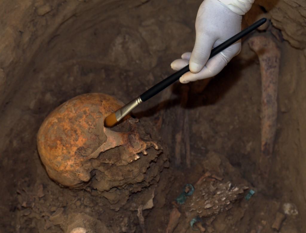 Cráneo Perú
