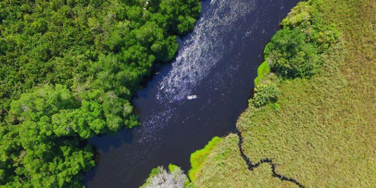 la Reserva de la Biósfera La Encrucijada Chiapas