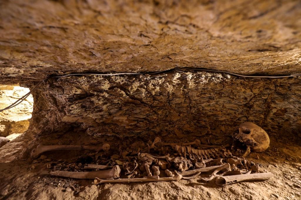 esqueleto descubierto