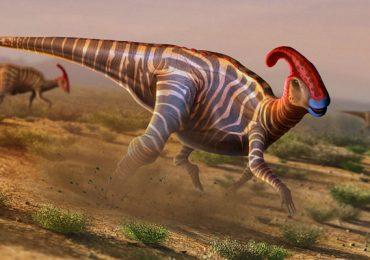 hadrosáuridos dinosaurio