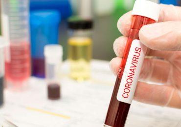 coronavirus pandemia Ecosistemas humanos