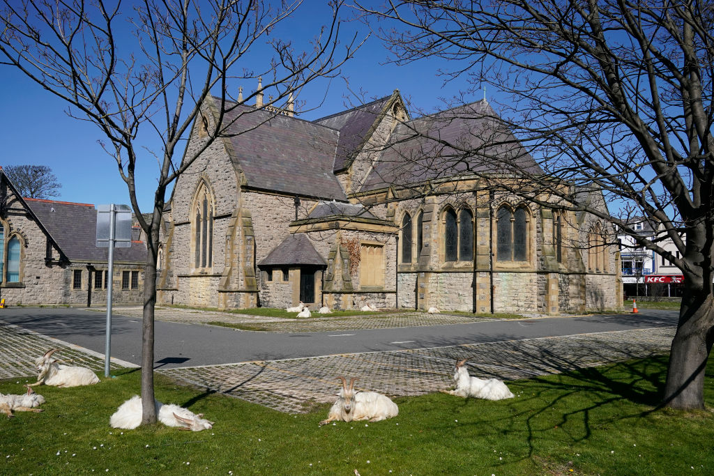Gales Iglesia
