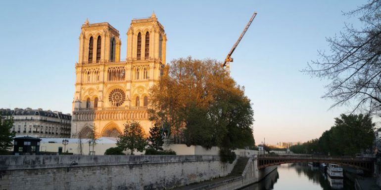 Catedral de Notre Dame Francia París 15 de abril