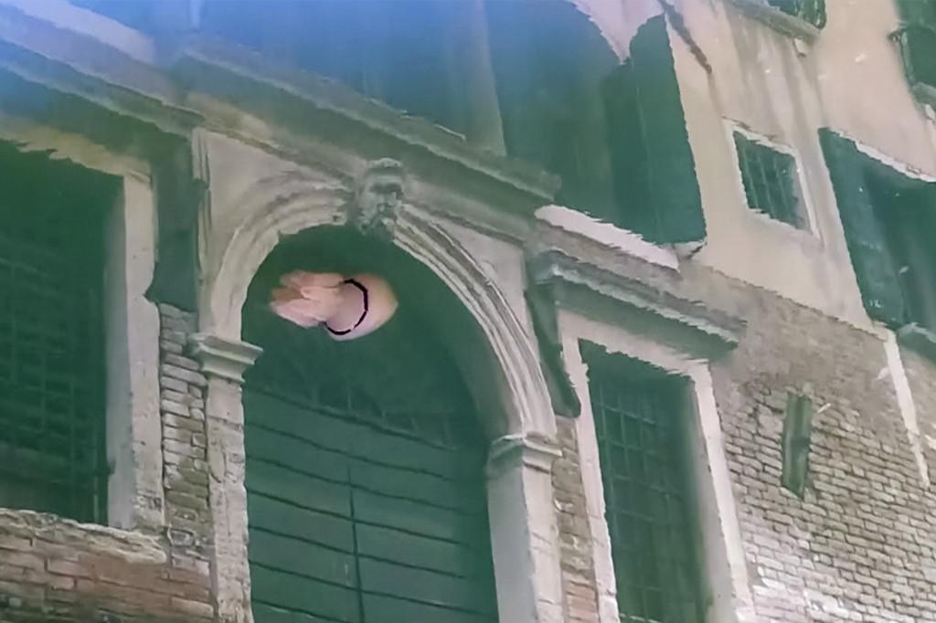 medusa Venecia Italia canales canal fauna