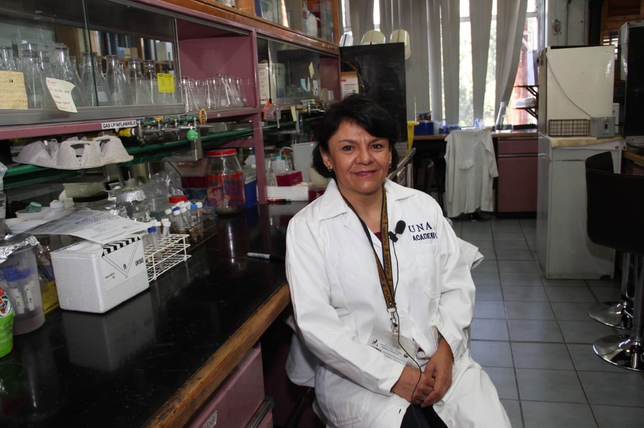 pruebas Facultad de Química COVID-19 UNAM
