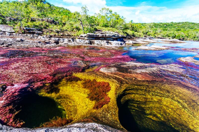 río más hermoso del mundo Colombia Caño Cristales