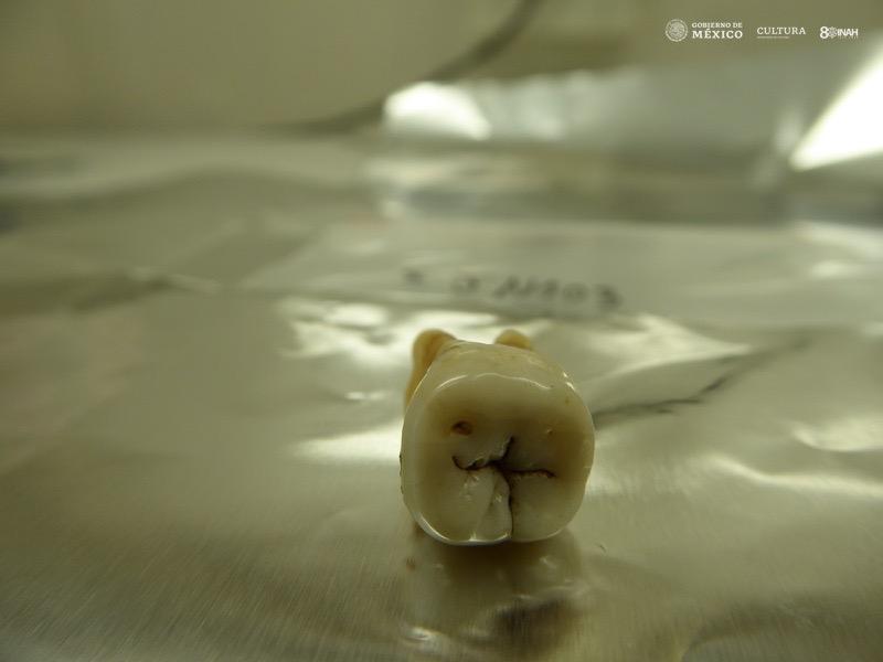 esclavos africanos dientes INAH huesos México
