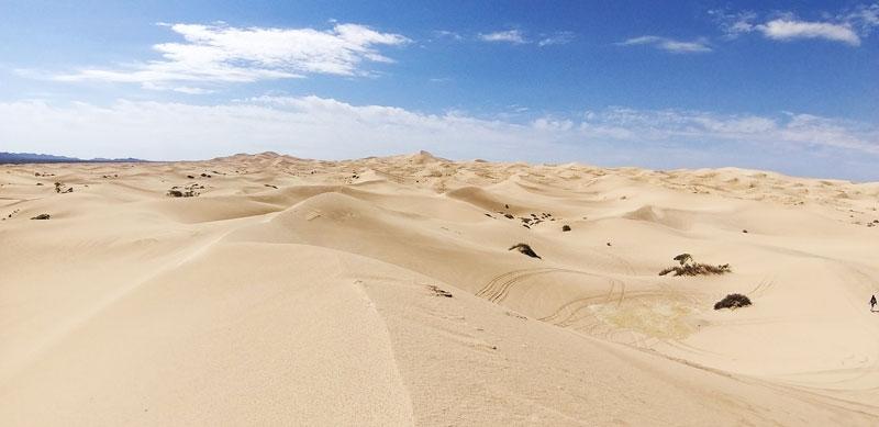 dunas de Samalayuca Chihuahua