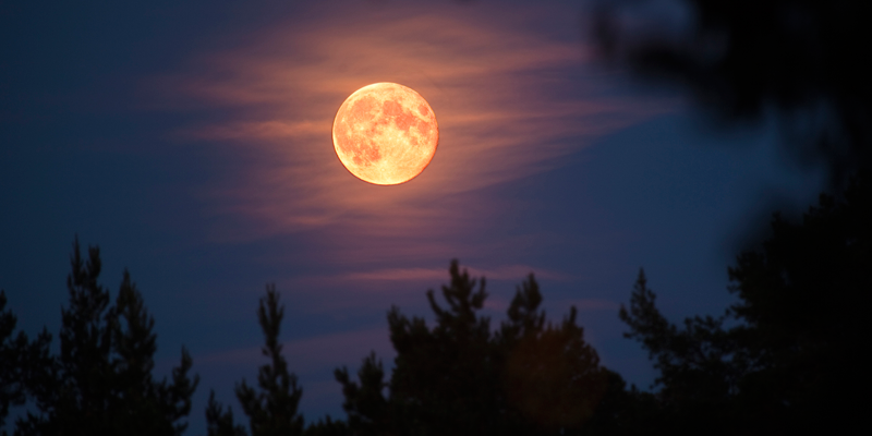 No te pierdas la Luna de Fresa y el eclipse penumbral en junio ...