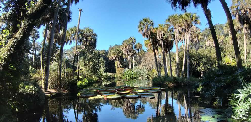 Bok Tower jardines Florida naturaleza