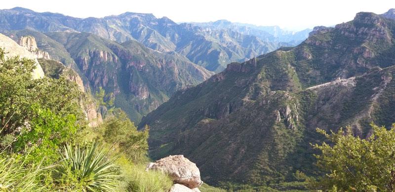 Chihuahua montañas maravilla natural