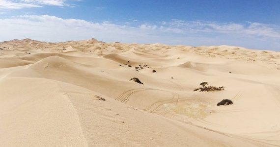 dunas de Samalayuca Chihuahua México