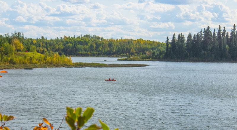 Parque Nacional de Elk Island Alberta Edmonton