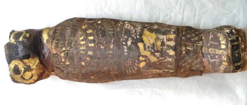halcón feto humano Egipto