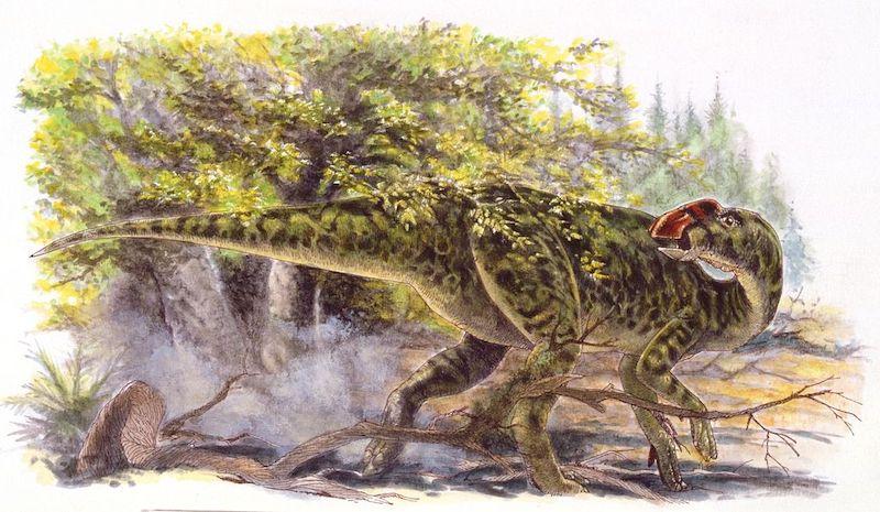 dinosaurios en México