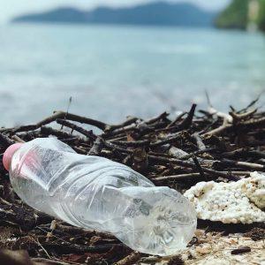 El efecto de los plásticos en el planeta