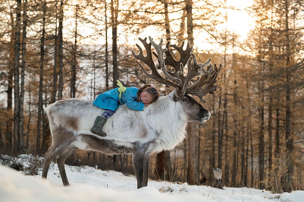 Los tsaatan, la tribu nómada de los hombres-reno que está a punto de desaparecer - National Geographic en espanol